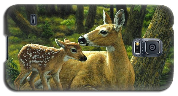 Whitetail Deer - First Spring Galaxy S5 Case by Crista Forest
