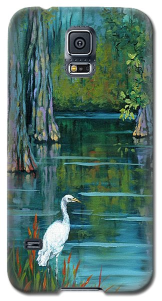 The Fisherman Galaxy S5 Case by Dianne Parks