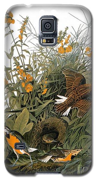 Audubon: Meadowlark Galaxy S5 Case by Granger