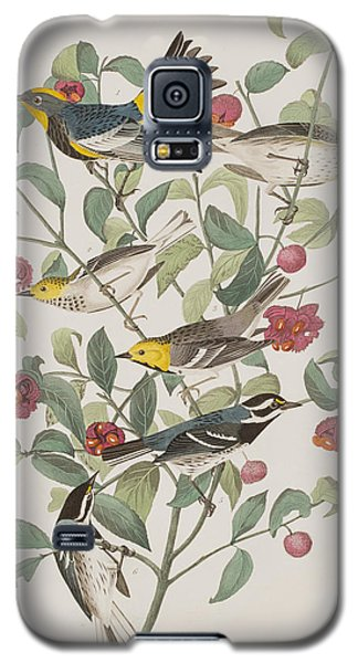 Audubons Warbler Hermit Warbler Black-throated Gray Warbler Galaxy S5 Case by John James Audubon