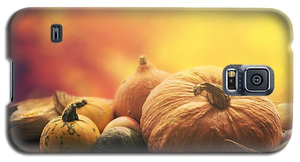 Pyrography Galaxy S5 Cases - Autumn crops Galaxy S5 Case by Jelena Jovanovic