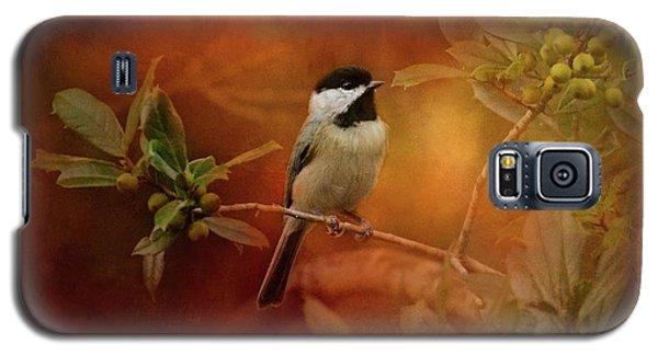 Autumn Day Chickadee Bird Art Galaxy S5 Case by Jai Johnson
