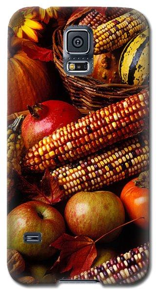 Autumn Harvest  Galaxy S5 Case by Garry Gay