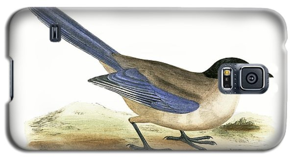 Azure Winged Magpie Galaxy S5 Case by English School