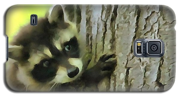 Baby Raccoon In A Tree Galaxy S5 Case by Dan Sproul