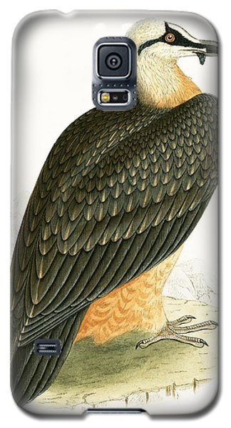 Bearded Vulture Galaxy S5 Case by English School