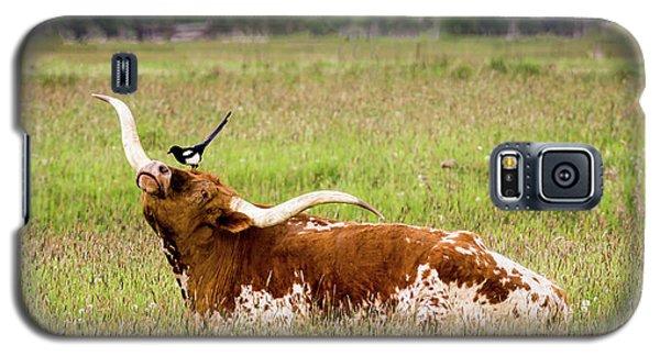 Best Friends - Texas Longhorn Magpie Galaxy S5 Case by TL Mair