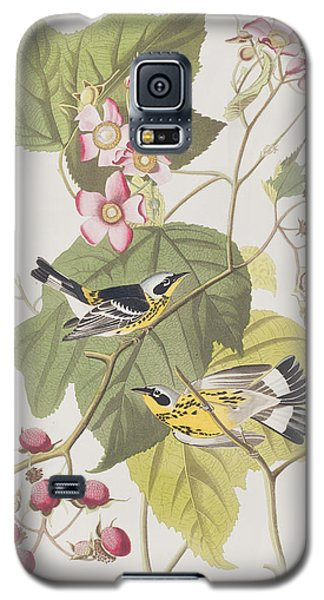 Black And Yellow Warblers Galaxy S5 Case by John James Audubon