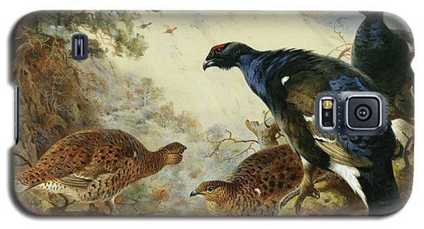 Blackgame Or Black Grouse Galaxy S5 Case by Archibald Thorburn