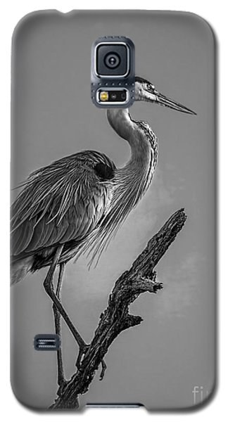 Blue In Black-bw Galaxy S5 Case by Marvin Spates