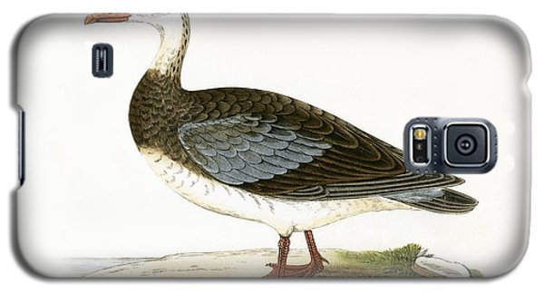 Blue Winged Goose Galaxy S5 Case by English School