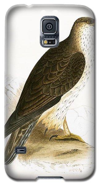 Bonelli's Eagle Galaxy S5 Case by English School
