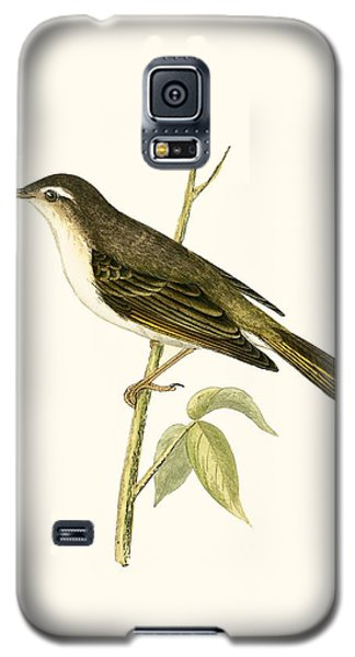 Bonelli's Warbler Galaxy S5 Case by English School