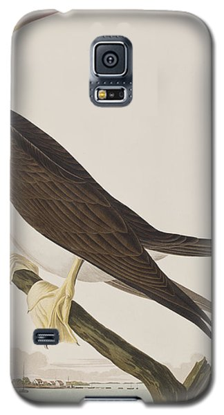 Booby Gannet   Galaxy S5 Case by John James Audubon
