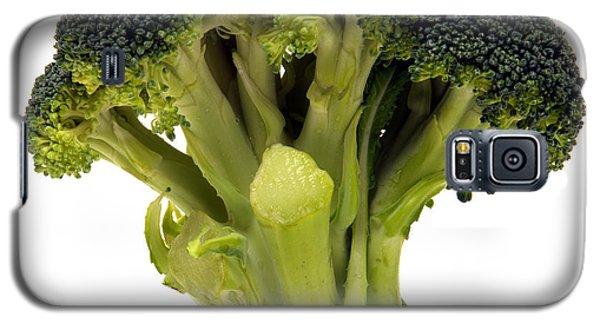 Broccoli  Galaxy S5 Case by Olivier Le Queinec