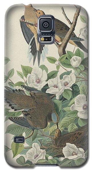 Carolina Pigeon Or Turtle Dove Galaxy S5 Case by John James Audubon
