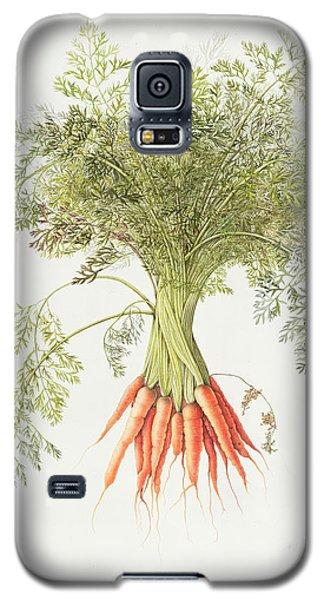 Carrots Galaxy S5 Case by Margaret Ann Eden