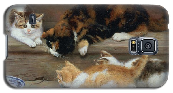 Cat And Kittens Chasing A Mouse   Galaxy S5 Case by Rosa Jameson