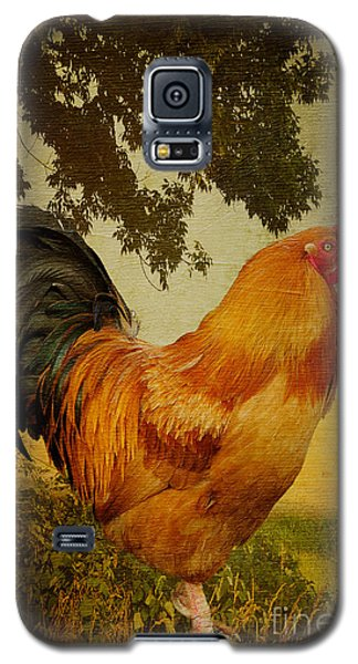 Chanticleer Galaxy S5 Case by Lois Bryan