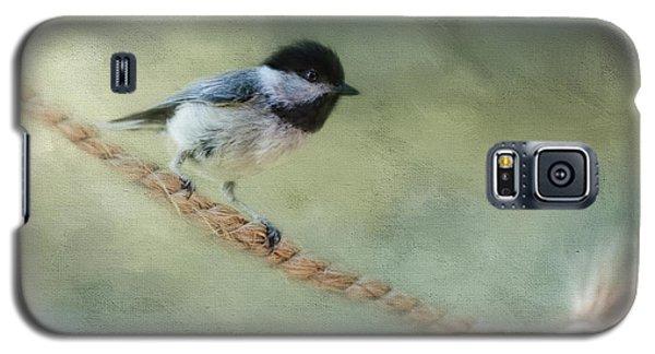 Chickadee At The Shore Galaxy S5 Case by Jai Johnson