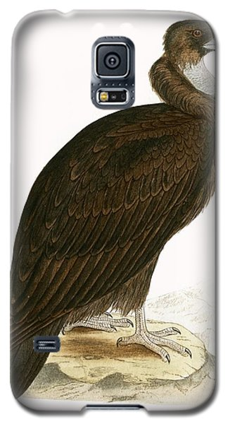 Cinereous Vulture Galaxy S5 Case by English School