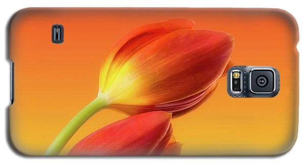 Colorful Tulips Galaxy S5 Case by Wim Lanclus