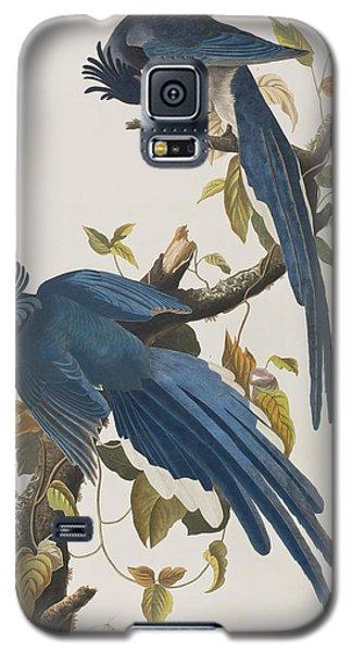 Columbia Jay Galaxy S5 Case by John James Audubon