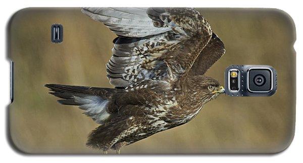 Common Buzzard Galaxy S5 Case by Michael Durham/FLPA
