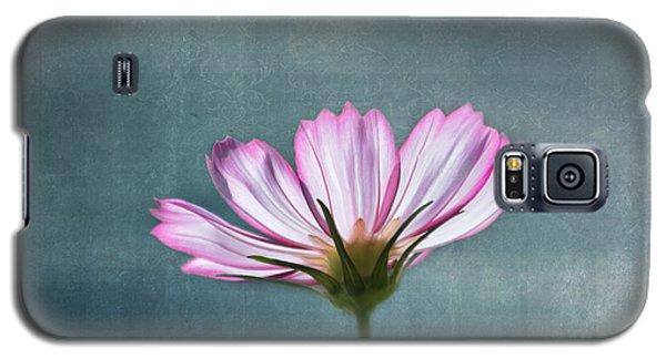 Flower Galaxy S5 Cases - Cosmos - Summer Love Galaxy S5 Case by Kim Hojnacki