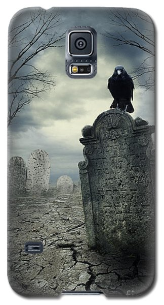 Pyrography Galaxy S5 Cases - Crow on the tombstone Galaxy S5 Case by Jelena Jovanovic