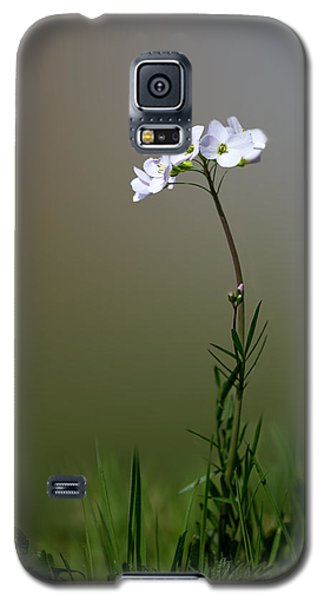 Cuckoo Flower Galaxy S5 Case by Ian Hufton