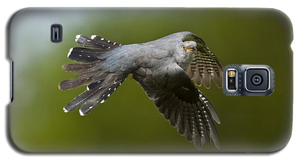 Cuckoo Flying Galaxy S5 Case by Steen Drozd Lund