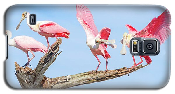 Day Of The Spoonbill  Galaxy S5 Case by Mark Andrew Thomas