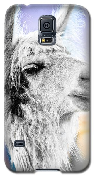 Dirtbag Llama Galaxy S5 Case by TC Morgan
