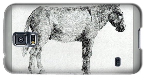 Donkey Galaxy S5 Case by George Stubbs