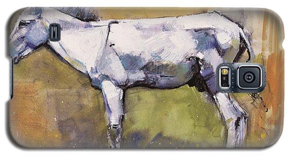 Donkey Stallion, Ronda Galaxy S5 Case by Mark Adlington