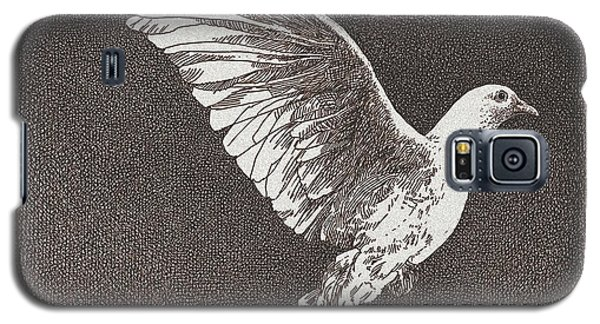 Dove Drawing Galaxy S5 Case by William Beauchamp