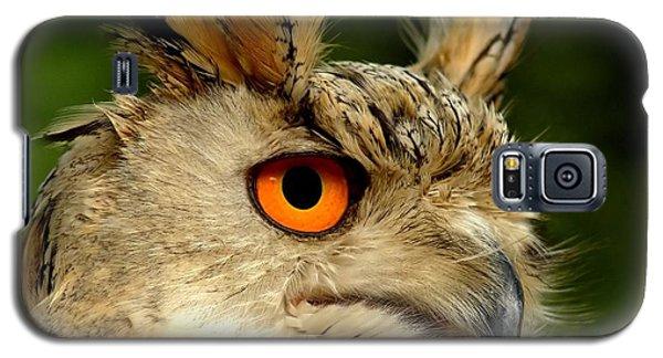 Eagle Owl Galaxy S5 Case by Jacky Gerritsen