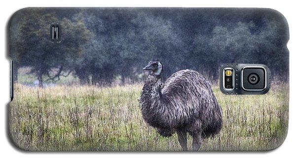 Early Morning Stroll Galaxy S5 Case by Douglas Barnard