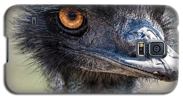 Emu Eyes Galaxy S5 Case by Paul Freidlund