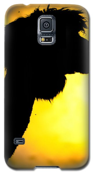Endless Alpaca Galaxy S5 Case by TC Morgan