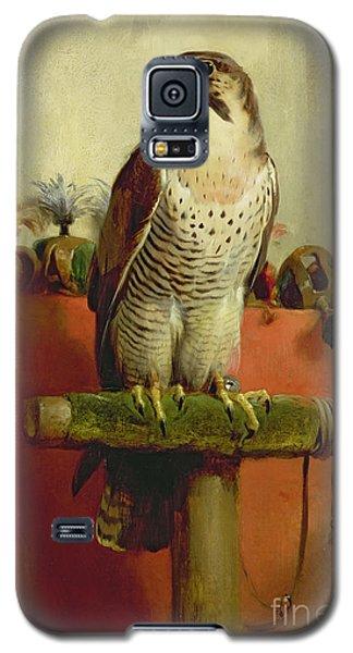 Falcon Galaxy S5 Case by Sir Edwin Landseer