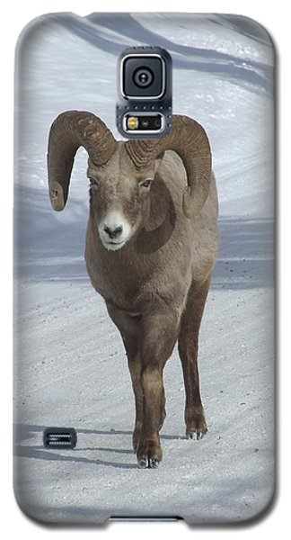 Farewell To The King Galaxy S5 Case by Tiffany Vest