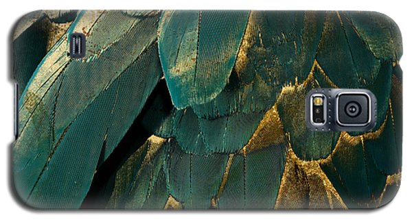 Feather Glitter Teal And Gold Galaxy S5 Case by Mindy Sommers