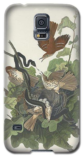 Ferruginous Thrush Galaxy S5 Case by John James Audubon