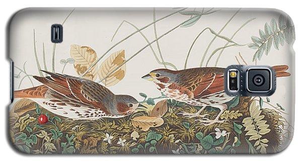 Fox Sparrow Galaxy S5 Case by John James Audubon