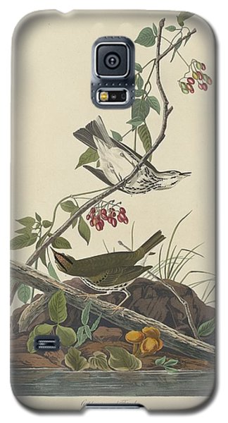 Golden-crowned Thrush Galaxy S5 Case by John James Audubon