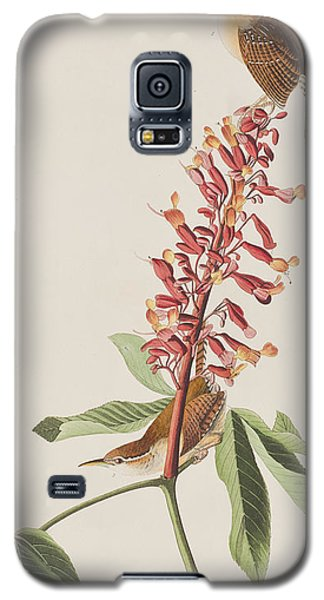 Great Carolina Wren Galaxy S5 Case by John James Audubon