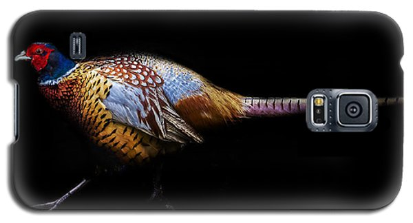 Have A Pheasant Day.. Galaxy S5 Case by Martin Newman
