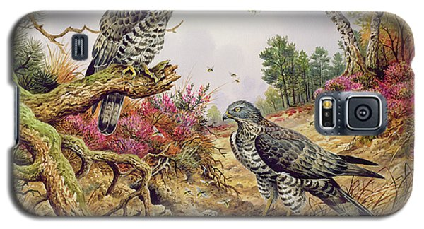Honey Buzzards Galaxy S5 Case by Carl Donner